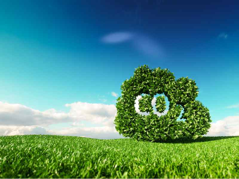 Sustainability Terms